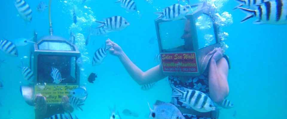 tourists feeding fishes in mauritius - solar undersea walk